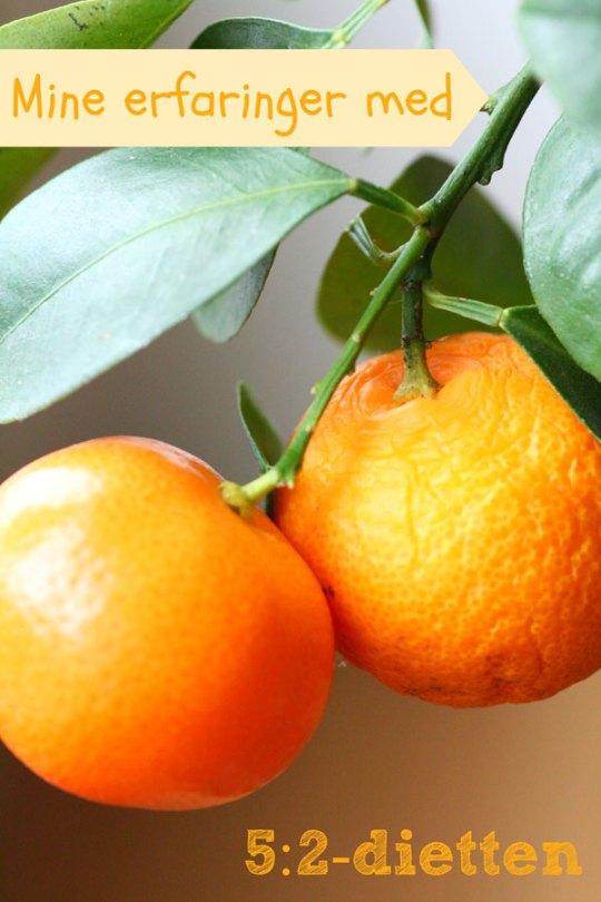 Ingeniørfruens-erfaringer-med-5-2-dietten