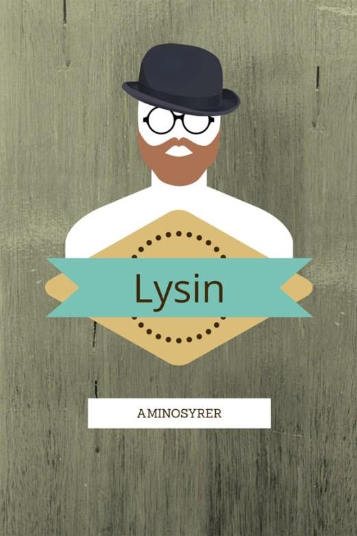 Ingeniørfruen-om-aminosyrer-Lysin