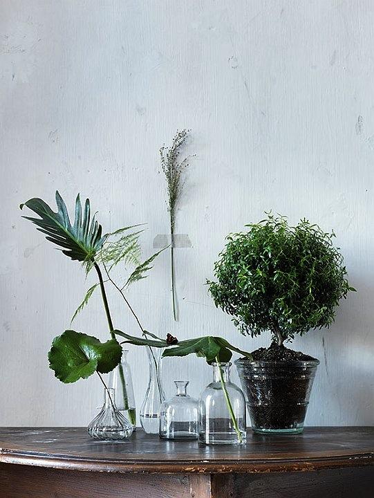 I glassflasker, potter og vaser. Og på veggen.