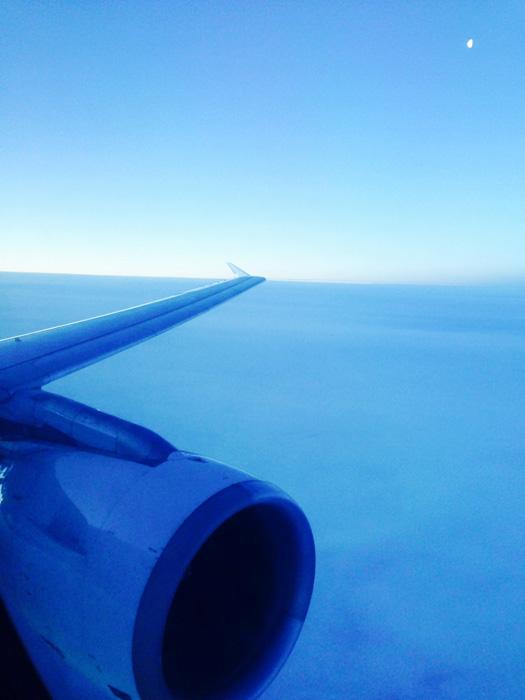 Sikrest-bakerst-i-flyet