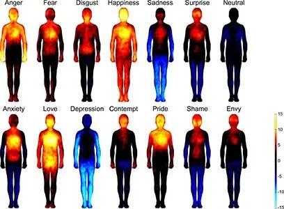 topographie emotions logees dans le corps