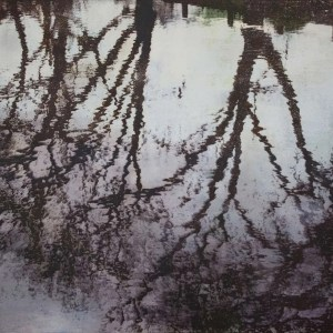 Hampstead Heath Pond reflections print