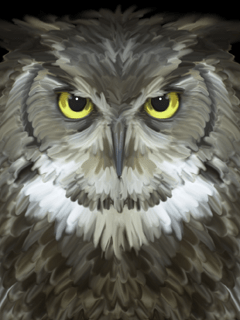 Owl_240x320_127181