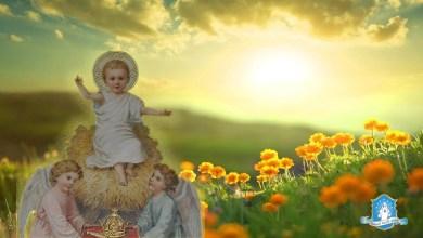 Photo of صلوات شكر لله الآب للأسبوع الأول من السنة – اليوم الأول