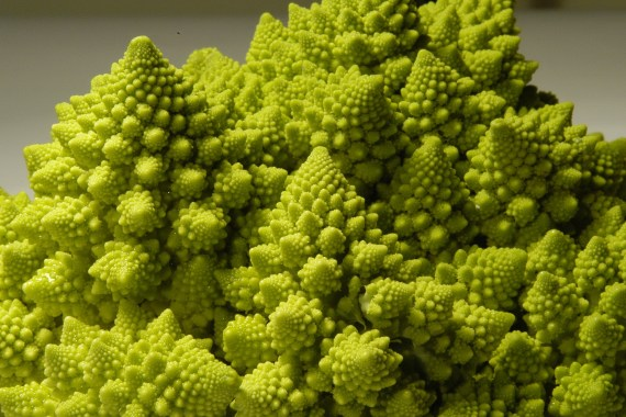 Fractals and the benefits of going outdoors