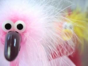 странная птица