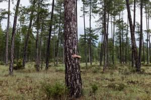 Al otro lado de ti by Maria Santos Photography - Al otro lado de ti es una conversación visual entre lo que dejamos ver y a la vez lo que escondemos.
