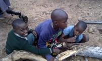 Die Kinder beim Honig herausholen