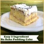 EASY 3 INGREDIENT NO BAKE PUDDING CAKE