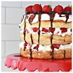 Summer Berry Aangel Food Cake