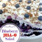 Blueberry JELL~O Salad