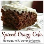 SPICED CRAZY CAKE