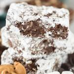 MUDDY BUDDY KRISPY TREATS