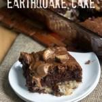 CHOCOLATE PEANUT BUTTER EARTHQUAKE CAKE