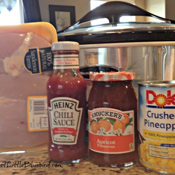 CROCK POT SWEET AND SOUR CHICKEN ~ 4 INGREDIENTS
