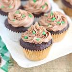 Guinness Chocolate Truffle Cupcakes with Bailey's Frosting