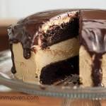 Chocolate Peanut Butter Buckeye Cake