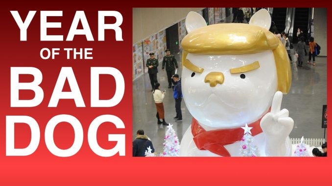 Chinese Astrology predictions for Donald Trump in the Year of the