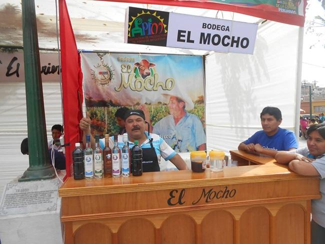 Mocho Salas