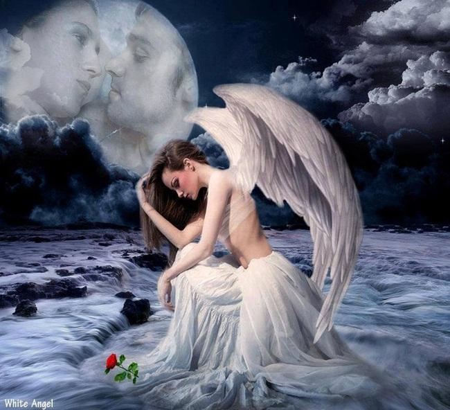 ANGEL DEL AMOR-1