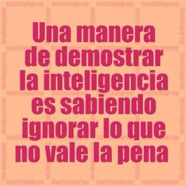 inteligencia-1