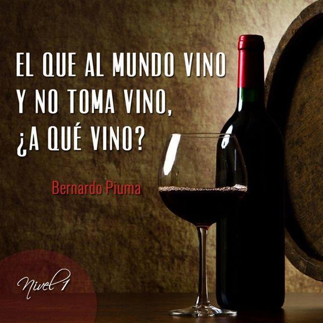 vino-2