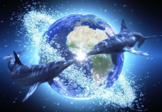 Het Schelpenbewustzijn 2: Hathor Aphrodite – Dolfijn & Vruchtbaarheidsgodin