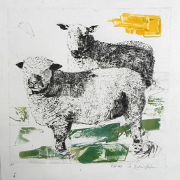 Two Brothers- color ii, Drypoint Monoprint, 2015