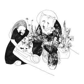 Cover - Bärenmann Album - Bergen