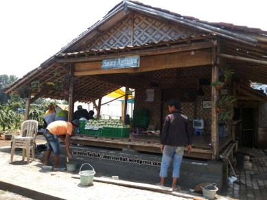 Saung Agritama