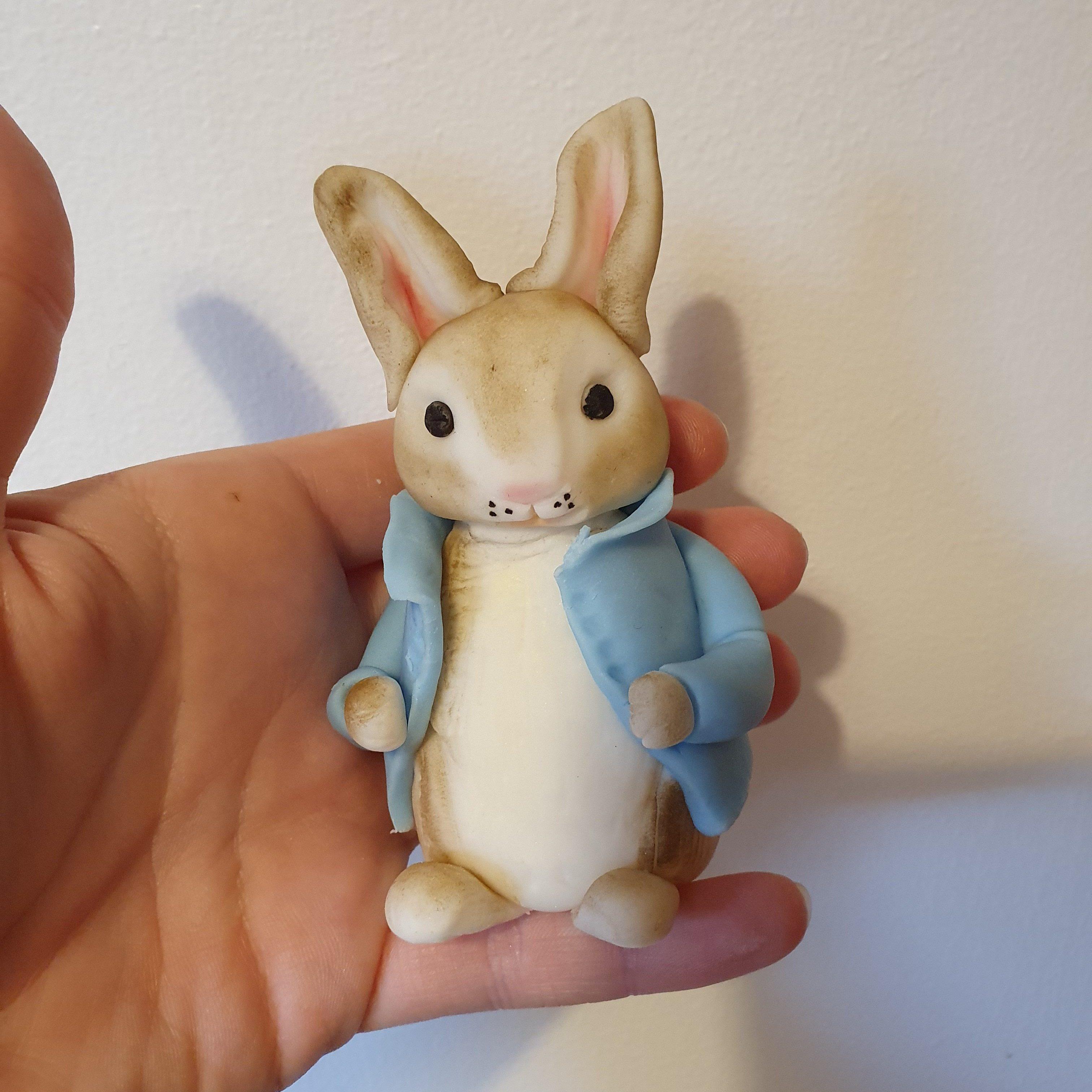 Creating bespoke cakes Peter Rabbit cake topper