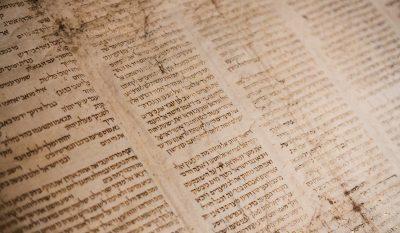 abjad alphabet consonnantique écriture