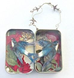 swallows-open