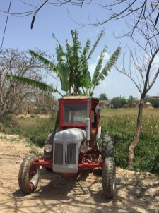 A tractor in the countryside