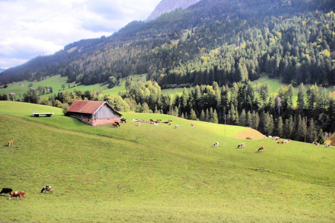 Picture-perfect landscapes