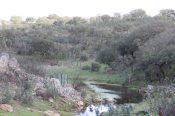A peaceful river