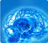 img-KoreanInstituteOfBrainScience