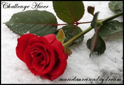 image challenge hiver