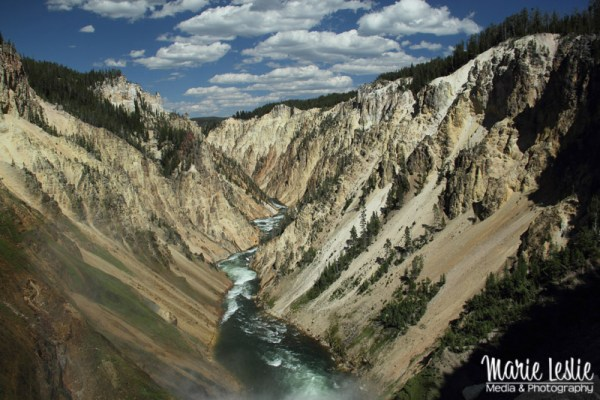 Yellowstone Canyon from Lower Falls