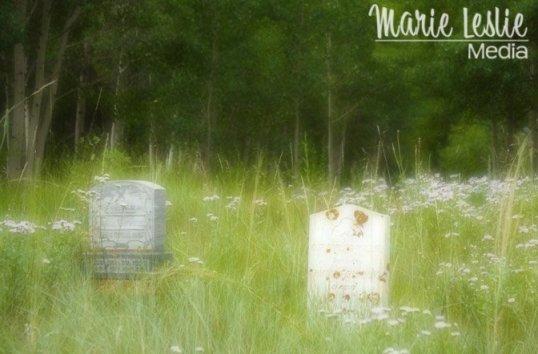 Alvarado Cemetery, Georgetown, CO ©Marie Leslie