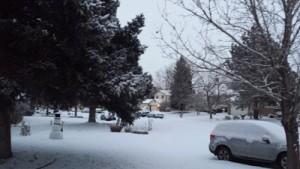 my winter view