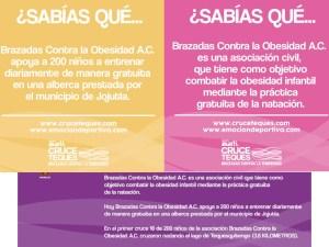 Brazadas contra la Obesidad, A.C.