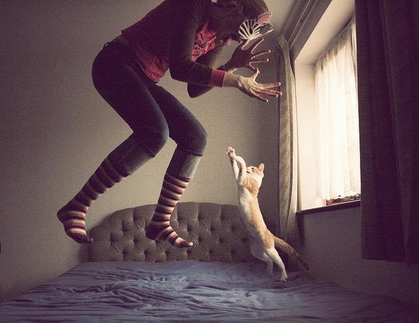 Favim.com-bed-cat-crazy-girl-jump-404669