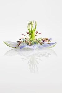 juffertje-groen-reflectie-macro-aquarel-love-mist