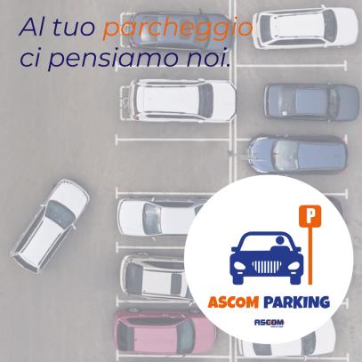 ascom-parking-torre-del-greco-mariella-romano-cronaca-e-dintorni