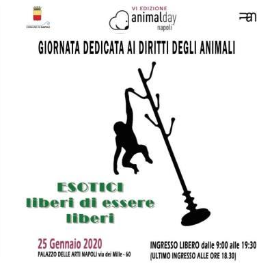 animal-day-napoli-mariella-romano-cronaca-e-dintorni