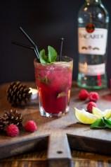 Spiced berry mojito-8824