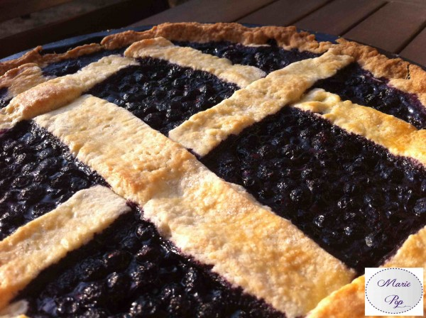 Tarte aux myrtilles… La vie en Blueberry !