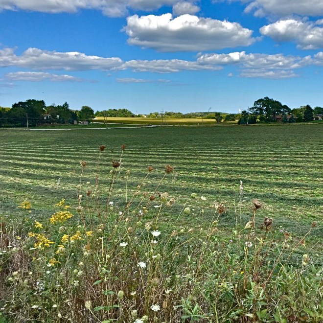 A gorgeous view from Caledonia, Wisconsin. Sent to me by one of my oldest and dearest friends.