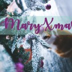 Maries Adventskalender | Tag 24